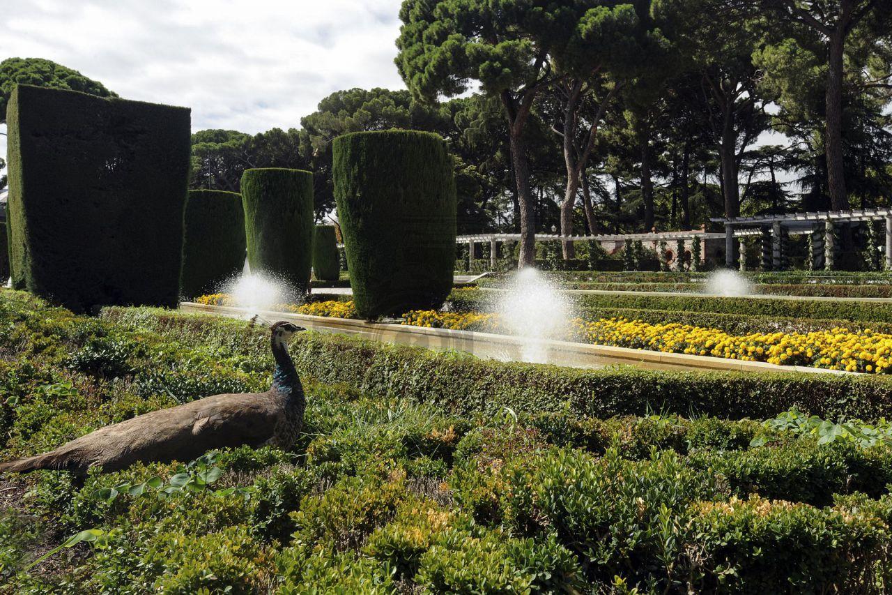 Los Jardines de Cecilio Rodríguez
