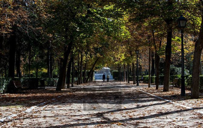 Si pasamos a fase 1, el lunes volverán a abrir los parques, como el Retiro.