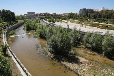 La candidatura 'Renaturalización del río Manzanares en el tramo urbano de Madrid' ha resultado ganadora en la categoría 'Medio Hídrico'.