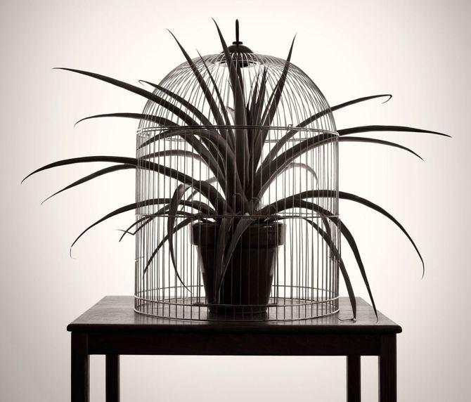 El artista madrileño (1958) influenciado por el surrealismo, el 'ready-made' de Duchamp y el realismo mágico inaugura este viernes en la galería Elvira González una exposición de obra fotográfica inédita creada en parte durante la pandemia, a la que se añade de manera inédita una escultura.
