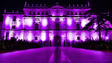 Alcalá de Henares, en femenino plural