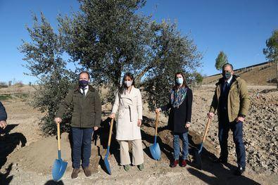 El primer árbol, un alcornoque que han plantado la vicealcaldesa y los portavoces de la oposición, recordará a las víctimas de la COVID-19. Desde hoy y hasta el 7 de enero, los madrileños podrán elegir a través de la web Decide Madrid el nombre de la parcela conmemorativa.