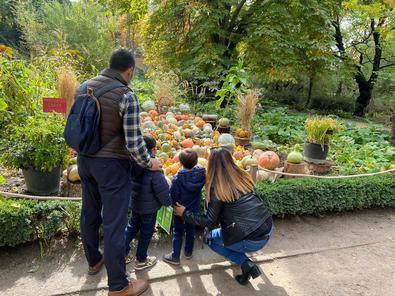 Una familia observa la exposición en la huerta del Jardín Botánico.