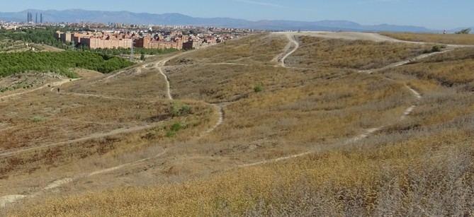 El cerro Almodóvar, un enclave emblemático para Madrid, recuperará sus valores paisajísticos, arqueológicos y naturales gracias al Plan de Protección Especial que el Ayuntamiento ha aprobado este jueves en Junta de Gobierno.