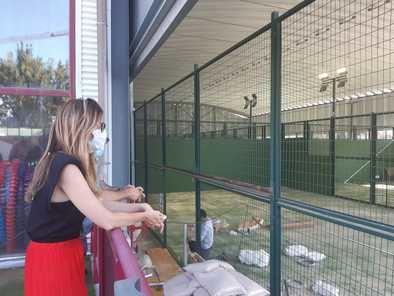 En el Centro Deportivo Municipal Pradillo, entre otras actuaciones, se está ejecutando la remodelación integral de las pistas de pádel y la renovación de la zona de fisioterapia.