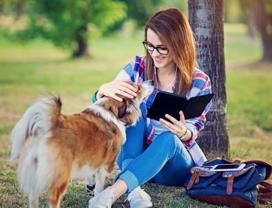En cuanto al prototipo de perro que había en las protectoras españolas en 2020 se trata de un mestizo, de tamaño medio, adulto y con buena salud.