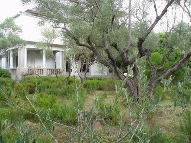 A partir de 1917 emergió en Chamartín una colonia donde intelectuales y científicos vivieron y desarrollaron su pensamiento en torno a olivos y madroños centenarios.