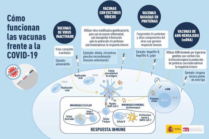 Guía rápida sobre las vacunas contra el coronavirus, su calendario y su administración