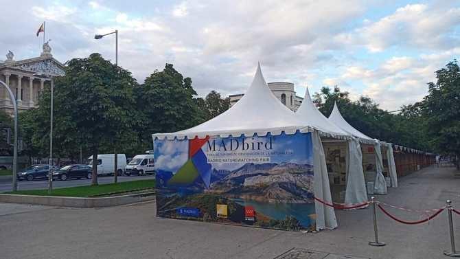 La Feria Internacional de Turismo de Observación de la Naturaleza, denominada MADbird FAIR, arranca este viernes en el paseo de Recoletos, con una programación llena de actividades.