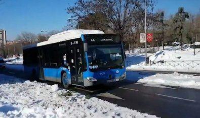 Tres días para ir gratis en autobús