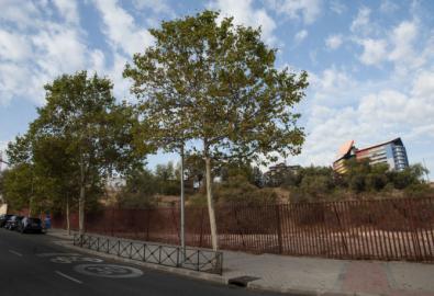 Los solares del Santiago Apóstol serán urbanizados