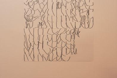 'Trémula', 2020. 18 dibujos. Tinta/ Papel. A3 (detalle).