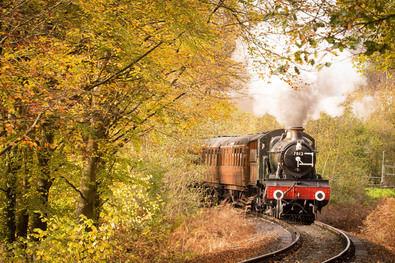 Estos singulares trenes, tanto por su diseño como por sus actividades turísticas y didácticas, nos muestran el pasado y el presente del ferrocarril.