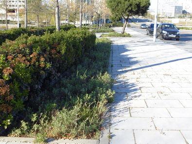 El nuevo contrato de limpieza de Valdebebas se adaptará a las características urbanas del barrio.