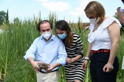Borja Carabante, Andrea Levy y Loreto Sordo soltaron ocho galápagos en el Manzanares.