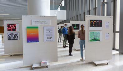 La muestra se enmarca en las actividades de la Semana de la Ciencia y se puede visitar en la sede de la Librería científica del CSIC en Madrid, hasta el 30 de noviembre.