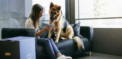 ¿Y si doy positivo en COVID-19 y tengo perro?