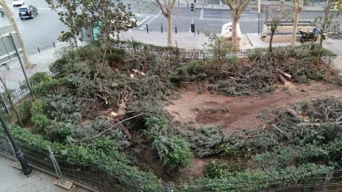 La reforma de la plaza ha supuesto la tala de medio centenar de árboles, desatando la polémica.